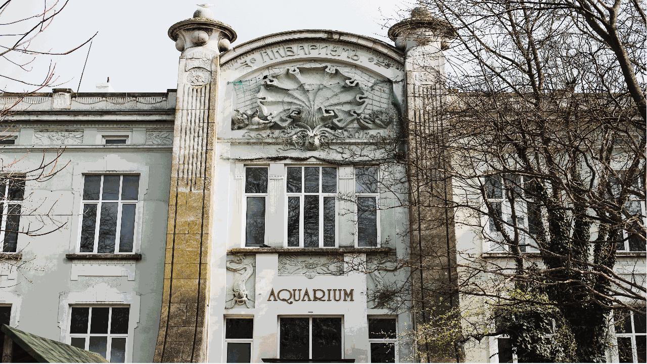 Аквариум Варна